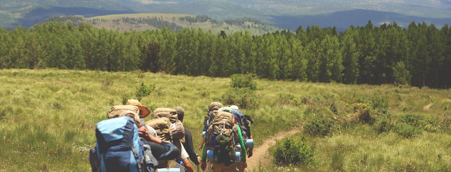 How can you hike safely?